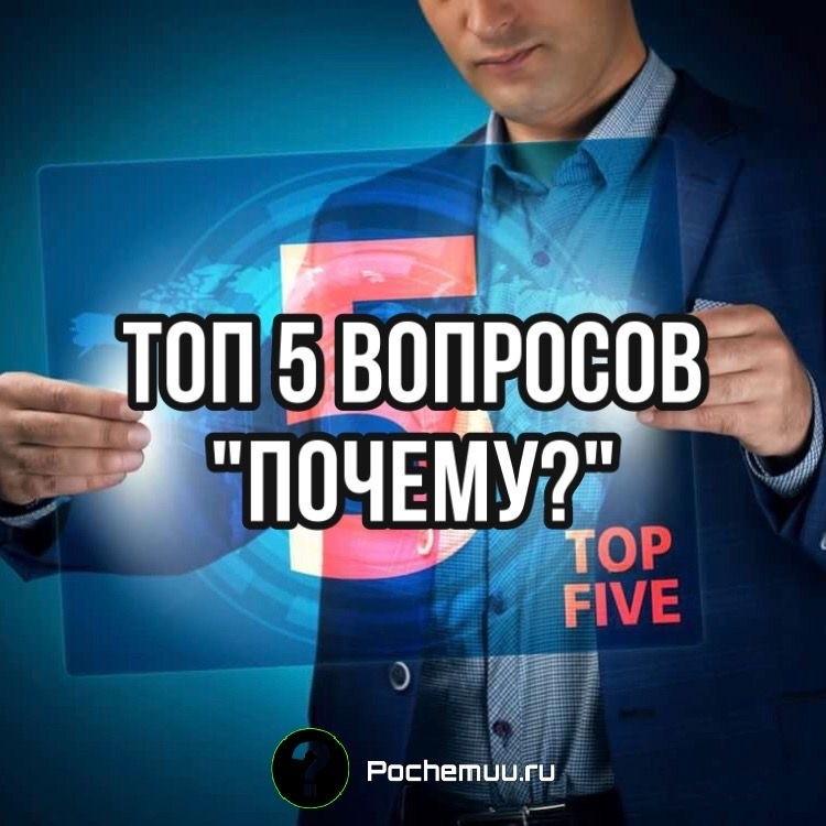 """Топ 5 вопросов """"Почему?"""""""