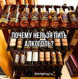 Read more about the article Почему нельзя пить алкоголь? Вред и польза от спиртного