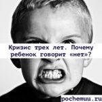 Кризис трех лет. Почему ребенок говорит «нет»? как быть родителям