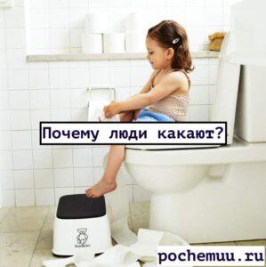 Read more about the article Какая какать? Симптомы при которых нужно беспокоиться