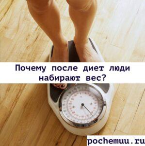 Read more about the article Почему после диет люди набирают вес?