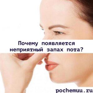 Read more about the article Почему от человека воняет потом? Основные причины. Как избавиться от запаха пота