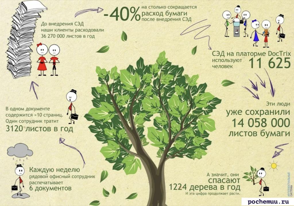 сколько гибнет деревьев для использования бумаги