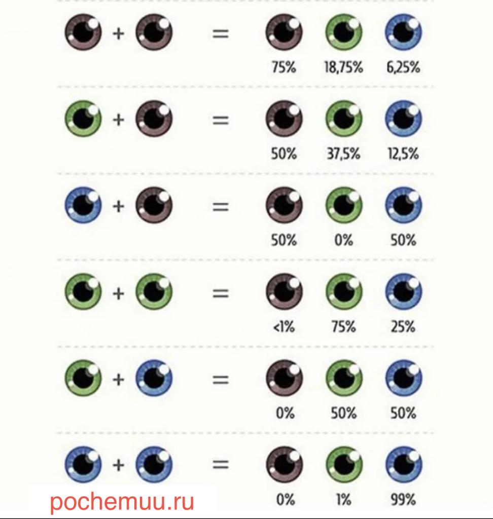 цвет глаз у детей