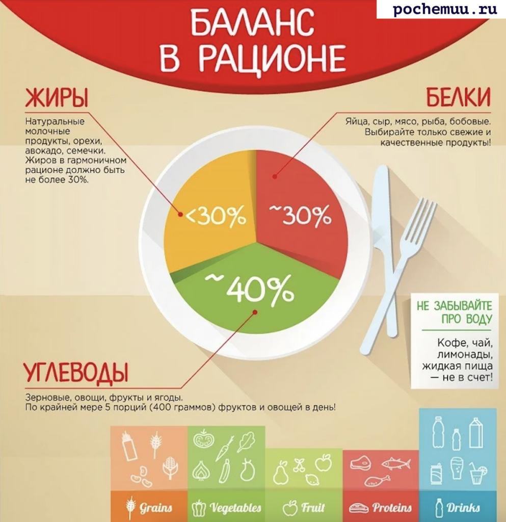 таблица баланса рациона еда и пища ее белки углеводы и жиры