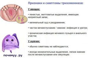 Read more about the article Трихомониаз. Описание. Болезни любви (видео)